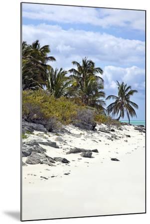 Schooner Cay Coastline-Larry Malvin-Mounted Photographic Print