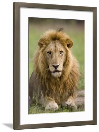The King-Susann Parker-Framed Photographic Print