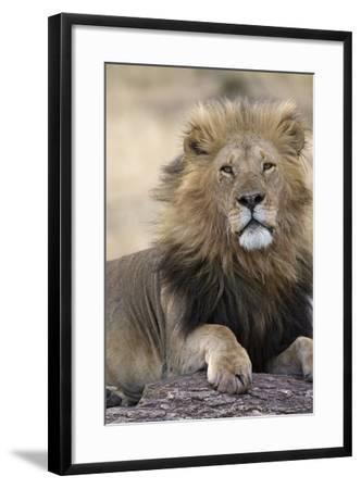 Africa's King-Susann Parker-Framed Photographic Print