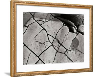 Texture 2-Lee Peterson-Framed Photographic Print