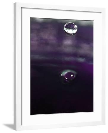 Grape Drink Drop IV-Tammy Putman-Framed Photographic Print