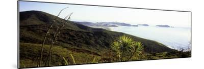 Cape Reinga I-Bob Stefko-Mounted Photographic Print