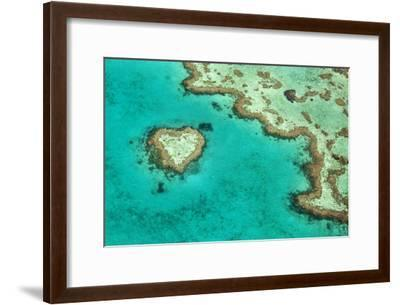 Great Barrier Reef II-Larry Malvin-Framed Photographic Print