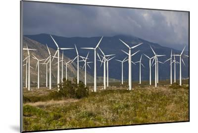 Windmills I-Lee Peterson-Mounted Photographic Print
