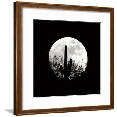 Moonrise in May II-Douglas Taylor-Framed Photographic Print