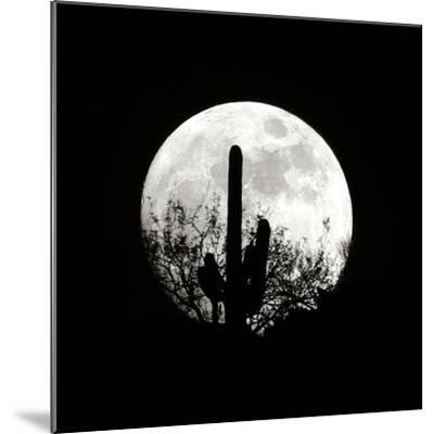 Moonrise in May II-Douglas Taylor-Mounted Photographic Print