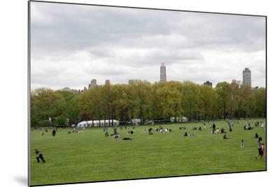 Spring in Central Park-Erin Berzel-Mounted Photographic Print