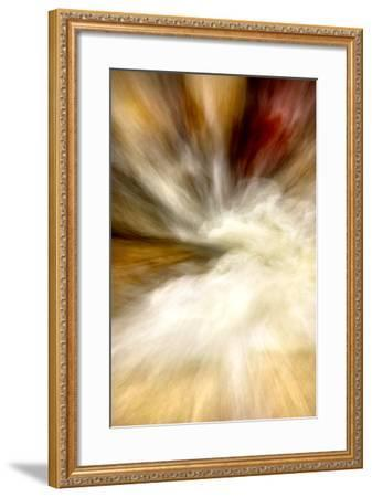 After the Rain I-Douglas Taylor-Framed Photographic Print