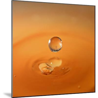Tomato Soup Drop I-Tammy Putman-Mounted Photographic Print