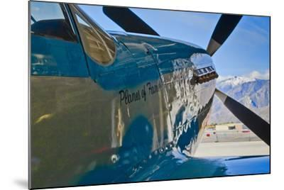 Aviation II-Lee Peterson-Mounted Photographic Print