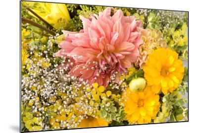 Summer Bouquet I-Maureen Love-Mounted Photographic Print