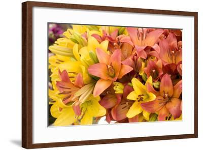 Sunny Lily I-Maureen Love-Framed Photographic Print
