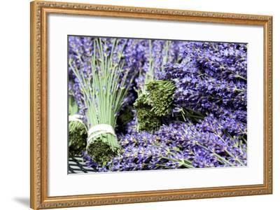 Lavender Bunches I-Dana Styber-Framed Photographic Print