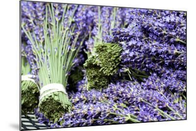 Lavender Bunches I-Dana Styber-Mounted Photographic Print
