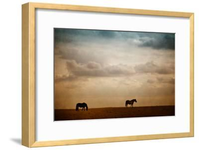 The Lookout-Roberta Murray-Framed Photographic Print