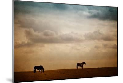 The Lookout-Roberta Murray-Mounted Photographic Print