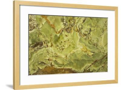 Patterns of Nature IV-JoAnn T^ Arduini-Framed Photographic Print