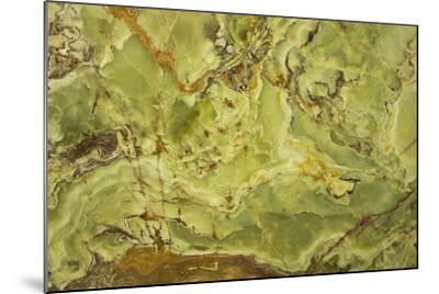 Patterns of Nature IV-JoAnn T^ Arduini-Mounted Photographic Print