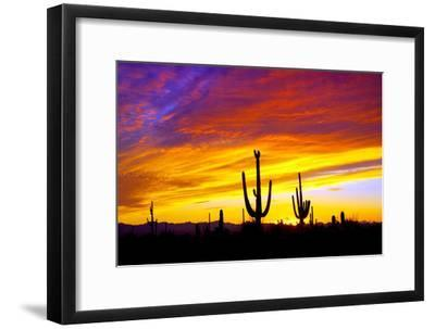 Equinox Sunset-Douglas Taylor-Framed Photographic Print