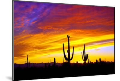 Equinox Sunset-Douglas Taylor-Mounted Photographic Print