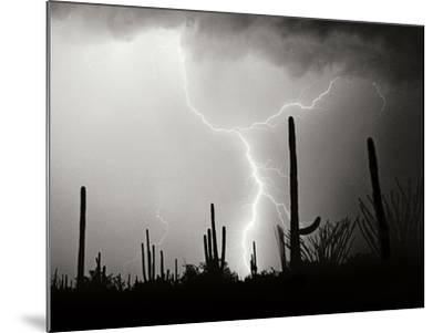 Electric Desert II BW-Douglas Taylor-Mounted Photographic Print