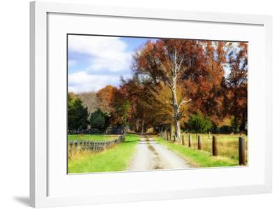 Hopkins Farm-Alan Hausenflock-Framed Photographic Print