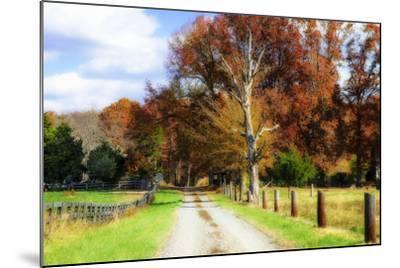 Hopkins Farm-Alan Hausenflock-Mounted Photographic Print