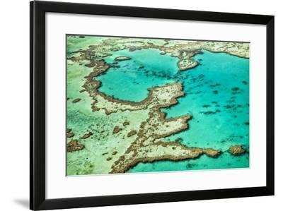 Great Barrier Reef III-Larry Malvin-Framed Photographic Print