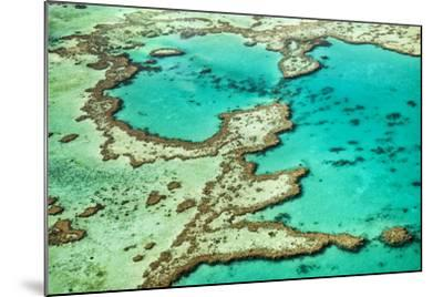 Great Barrier Reef III-Larry Malvin-Mounted Photographic Print