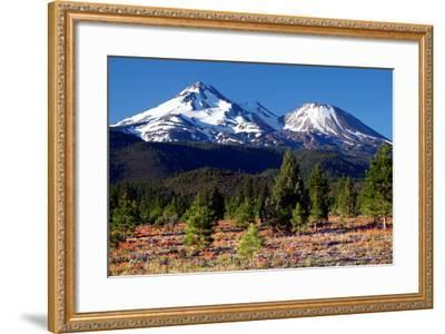 Morning in Shasta-Douglas Taylor-Framed Photographic Print