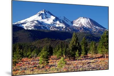 Morning in Shasta-Douglas Taylor-Mounted Photographic Print