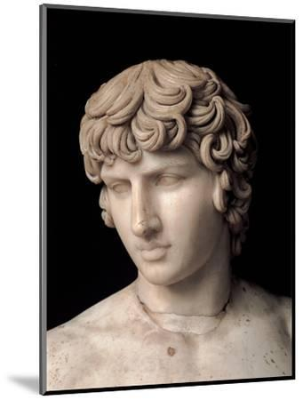 Antinous Farnese, 2nd Century, Marble, All Rounded--Mounted Photographic Print