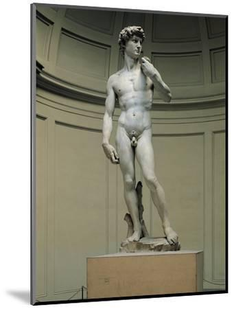 David-Michelangelo Buonarroti-Mounted Photographic Print