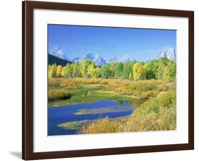 Teton Range, Grand Teton National Park, USA-Stan Osolinski-Framed Photographic Print