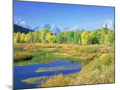 Teton Range, Grand Teton National Park, USA-Stan Osolinski-Mounted Photographic Print
