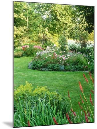 Island Beds Planted with Lychnis, Rosa, Caltha Palustris (Kingcups), Iris & Polygonium-Sunniva Harte-Mounted Photographic Print