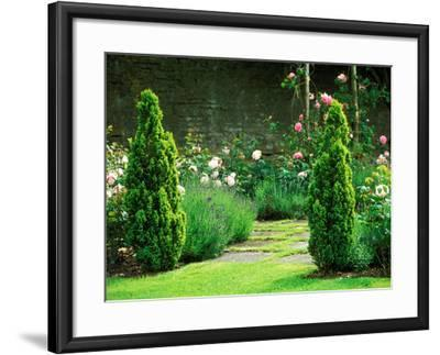 Country Garden Filled with Roses and Borders with a Pond and Old House, Wiltshire-Lynn Keddie-Framed Photographic Print