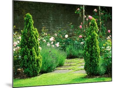 Country Garden Filled with Roses and Borders with a Pond and Old House, Wiltshire-Lynn Keddie-Mounted Photographic Print