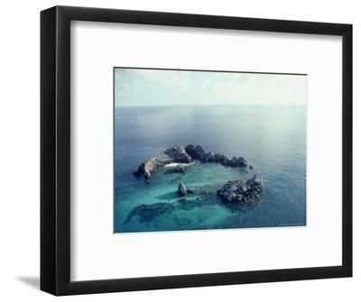 Devils Crown, Galapagos Islands-Mary Plage-Framed Photographic Print