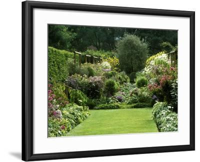 Autumn Garden, Aster, View to Seat Under Pyrus, Aster in Border, Wooden Support, France-Michele Lamontagne-Framed Photographic Print