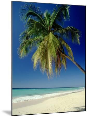 Beach, West Indies-Mike England-Mounted Photographic Print