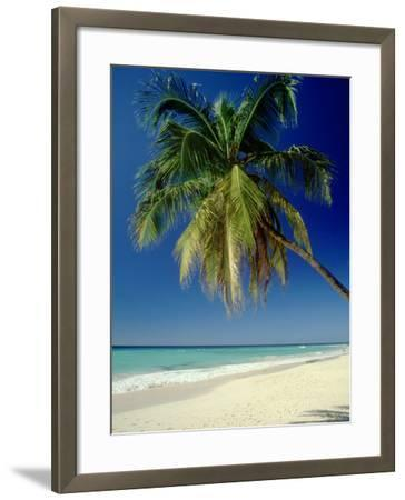 Beach, West Indies-Mike England-Framed Photographic Print
