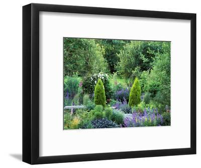 View into Country Garden with Perennials and Small Trees Summer-Lynn Keddie-Framed Photographic Print