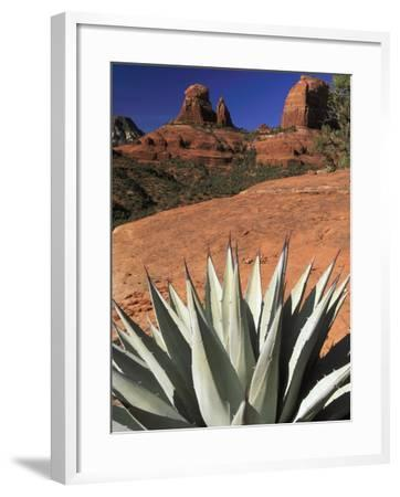 Agave Cactus and Red Rock Formations-Adam Jones-Framed Photographic Print