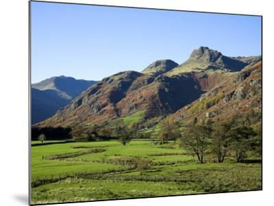 Langdale Valley in the Lake District, UK-David Clapp-Mounted Photographic Print