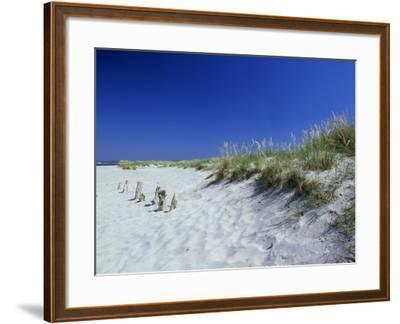 Sand Dunes and Marram Grass, West Sussex, UK-Ian West-Framed Photographic Print