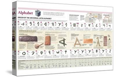 Infographic Explaining the Origin and Evolution of the Alphabet, Letter by Letter--Stretched Canvas Print
