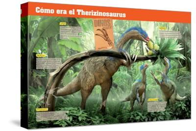 Infografía Del Terizinosaurio, Saurópodo Herbívoro Del Cretácico, Era Mesozoica--Stretched Canvas Print
