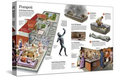 Infographic About Everyday Life in the Roman City of Pompeii--Stretched Canvas Print