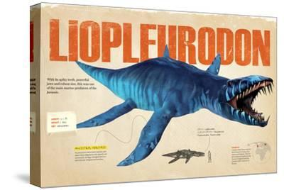 Infographic About the Liopleurodon, a Marine Predator from the Jurassic Period--Stretched Canvas Print
